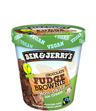 Chocolate Fudge Brownie Non-Dairy Frozen Dessert Tub