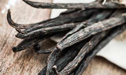 Photo of Vanilla Beans